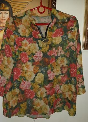 Легенька шифонова рубашка