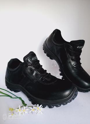 Кожанные трекинговые кроссовки ecco professional размер 40