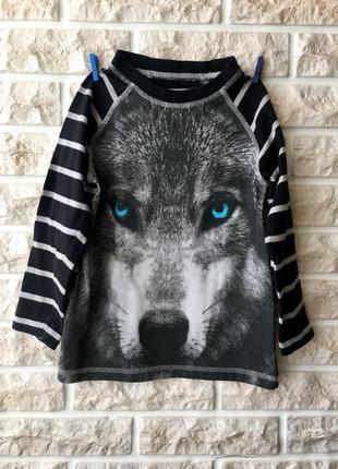 Реглан лонгслив волк