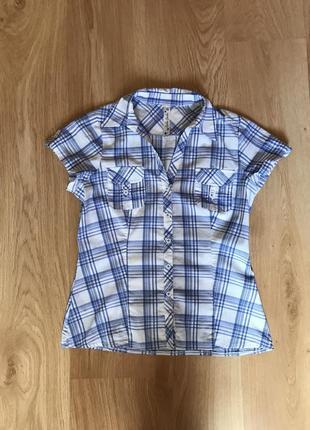 Женская рубашка в голубую клеточку