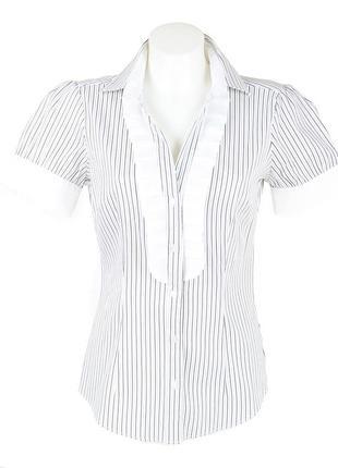 Блуза в полоску с коротким рукавом