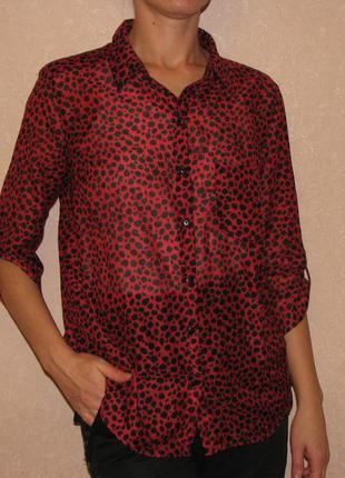 Блузка женская новая бордо stradivarius s-l