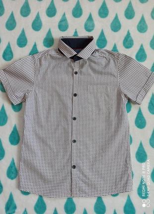 Рубашка сорочка тениска