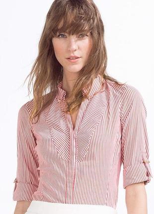 Рубашка блуза кофточка хлопок в красную полоску от zara, м