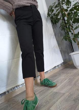 Короткие брюки, стрейчевые, бриджи.