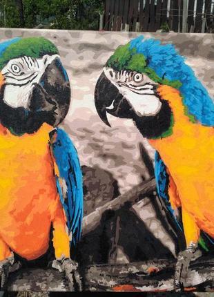 Картина попугаи