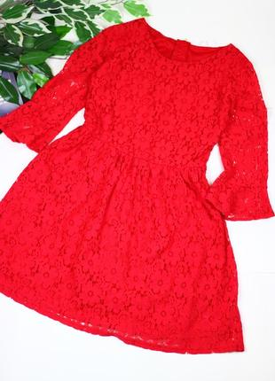 Кружевное платье в стиле d&g