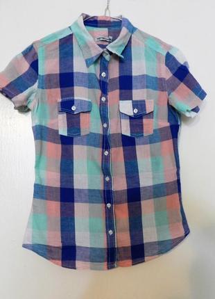 Рубашка, рубашка в клетку, рубашка terranova, рубашка короткий рукав