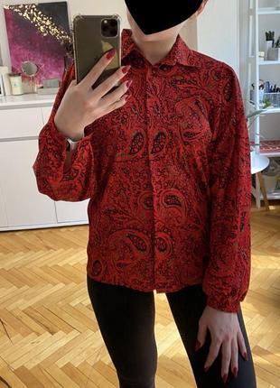 Рубашка блуза принт огурцы