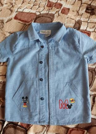 Рубашка, короткий рукав 12-24 мес