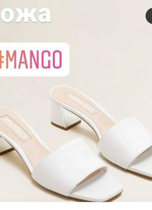 Шлепки mango