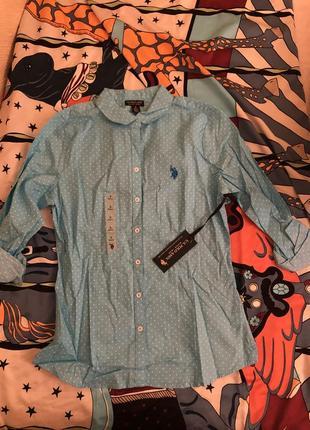 Голубая рубашка в горошек polo