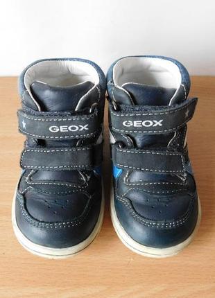 Ботинки geox 21-22 р. стелька 13,8 см
