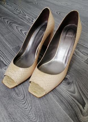 Чудові туфлі шкіра пітона