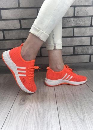 Яркие летние кроссы