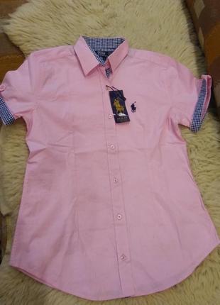 Рубашка короткий рукав,нежно розовый,polo