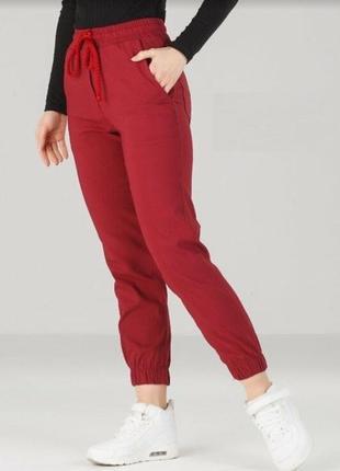 Спортивные штаны джогеры в цветах