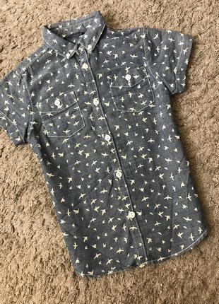 Рубашка с коротким рукавом 116-122 см