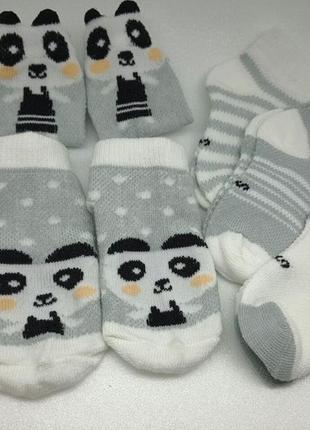 Детские летние носки. набор 5пар