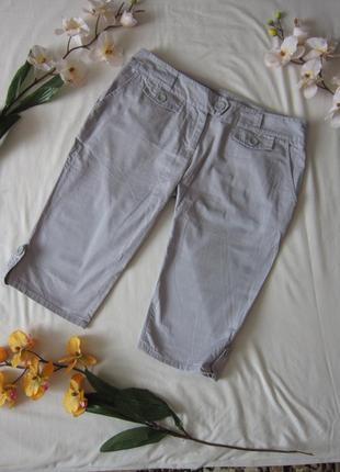 Класичні шорти bhs