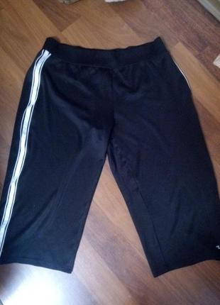 Мужские спортивные шорты для тренировок