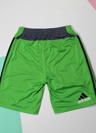 Топовые шорты с вшитыми лосинами от adidas marathon 106 фото