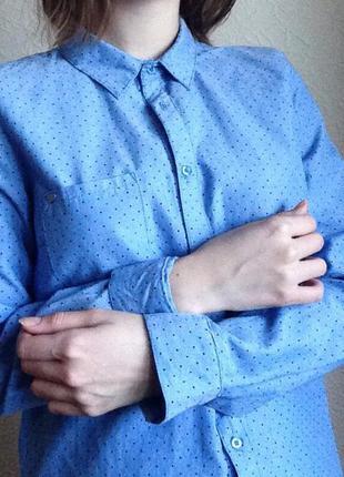 Рубашка оксфорд ✨