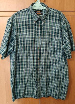 Рубашка в клетку с коротким рукавом бренда dickies