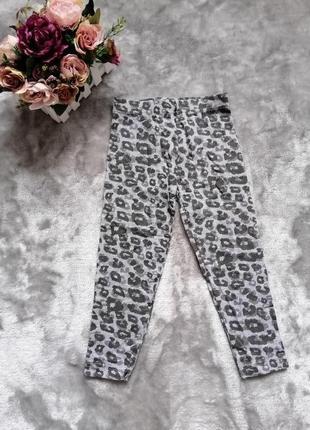 Леопардовые лосинки e-vie angel на 4 года