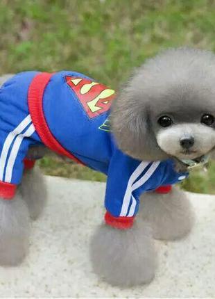 Одежда для домашних животных флисовая кофта толстовка с капюшоном стиль superman