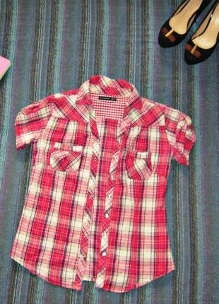 Рубашка,блузка,блуза в клетку