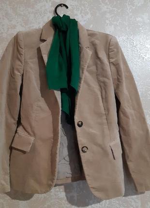 Жакет пиджак с поясом gucci