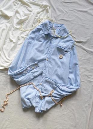 Нежно-голубая рубашка в полоску tom tailor