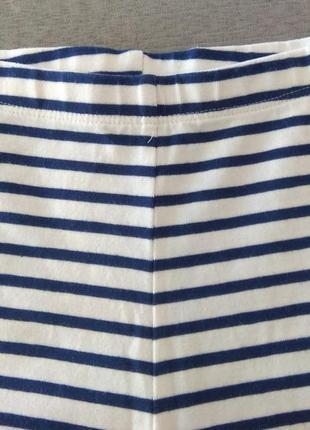 Сине-белые полосатые лосины next р. 1,5-2 года3 фото