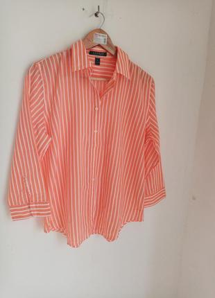 Lauren ralph рубпшка хдопок блузка в полоску на лето орыгинал на літо 38-40 м-л