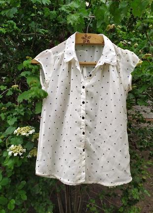 Прозрачная блузка в горошек💕💐🌺8