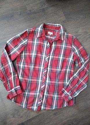 Рубашка tom lailor