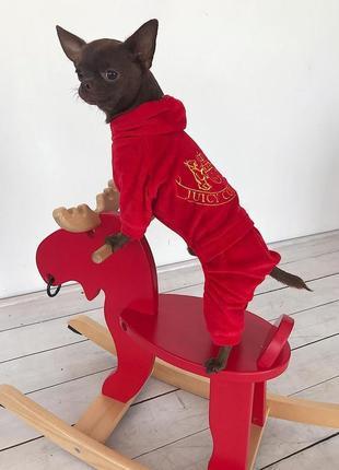 Спортивный костюм, костюм для собачки. одежда