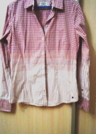 Брендовая рубашка. м р. 44-46 – фото, замеры