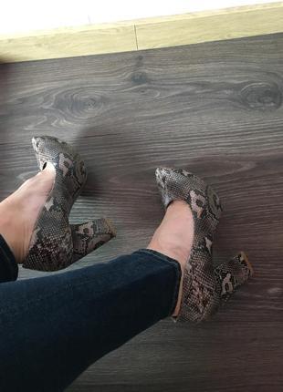 Туфли лодочки на устойчивом каблуке кожа питона