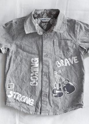Стильная рубашка для мальчика от gloria jeans