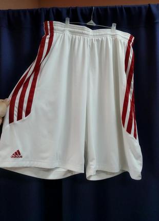 Баскетбольные шорты adidas