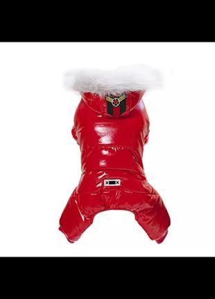 Зимний костюм на щенка