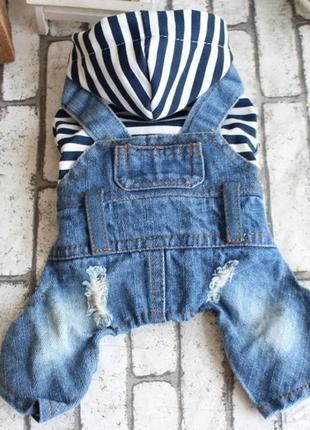 Комбинезон(комбез джинсовый) для собак. размер м.
