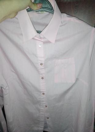 Блуза,блузка, рубашка