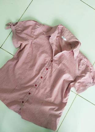 Полосатая блуза рубашка на короткий рукав