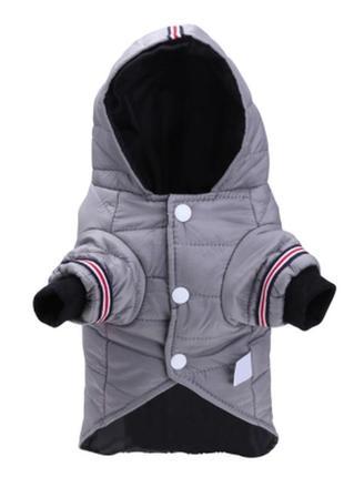 Курточка для собачки3 фото