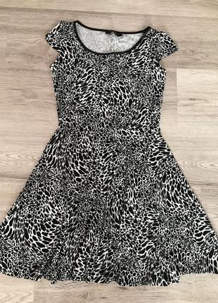Сукня dorothy perkins