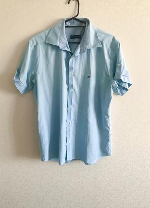 Рубашка мужская, голубая рубашка, летняя мужская рубашка tommy hilfiger