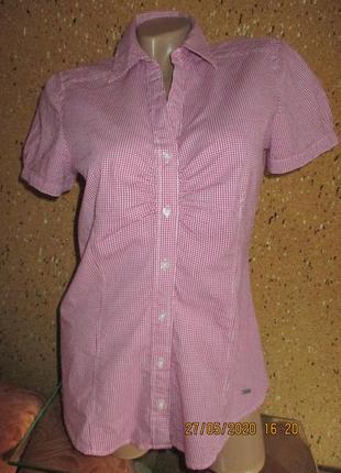 Мелкая клетка,рубашка с коротким рукавом,пог  до 50см